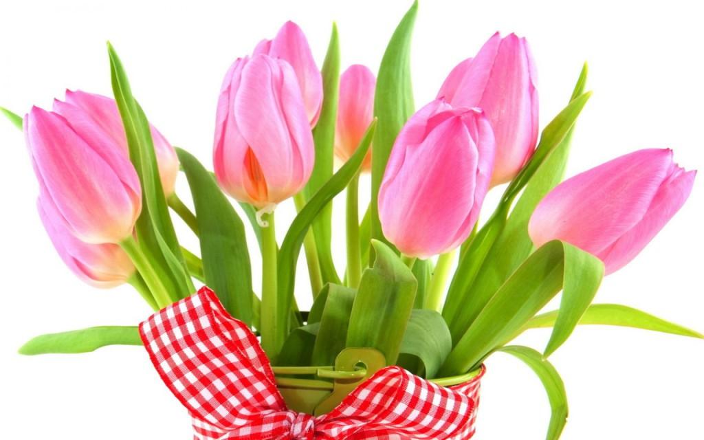тюльпаны стояли долго