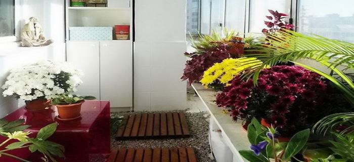 Использование балкона как сада