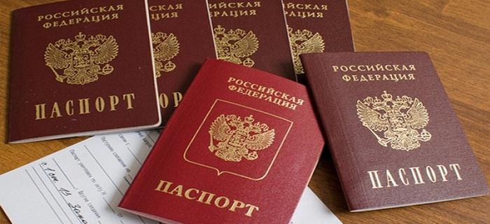 Достоинства и недостатки биометрического паспорта