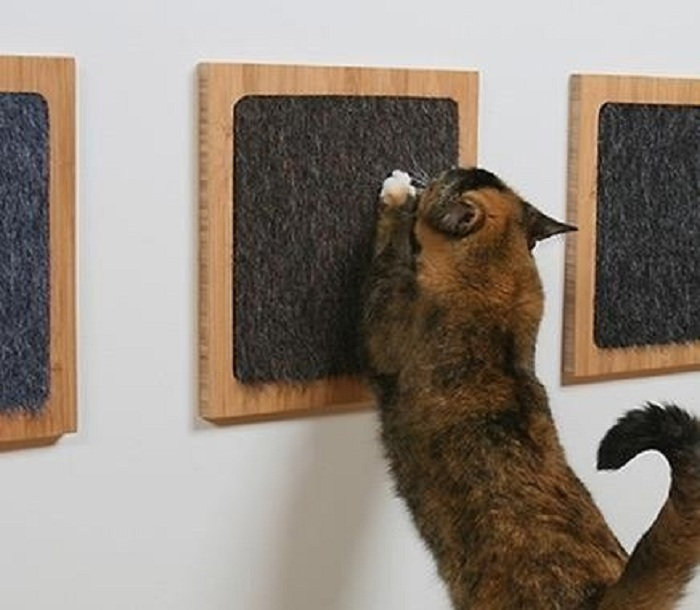 когтеточка из войлока для кошки