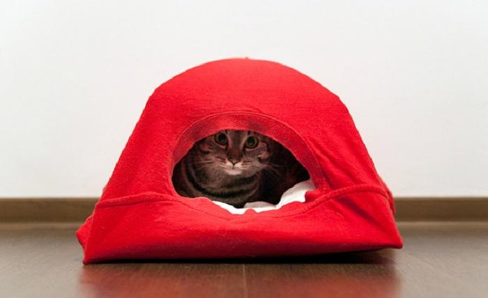 Домик для кота из коробки и футболки своими руками 70