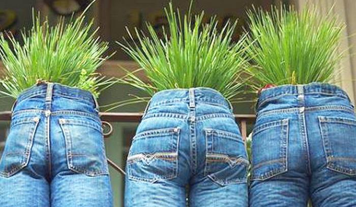 травяное пятно на джинсах