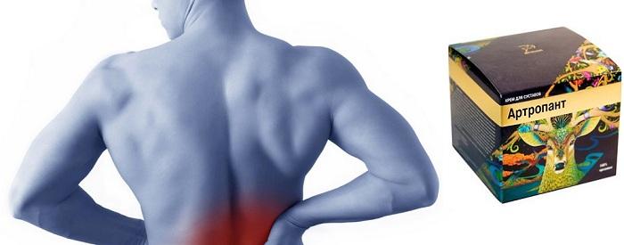 artropant-dejstvie