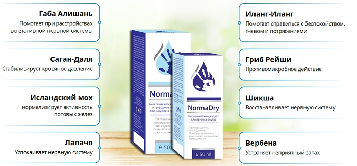normadraj-sostav