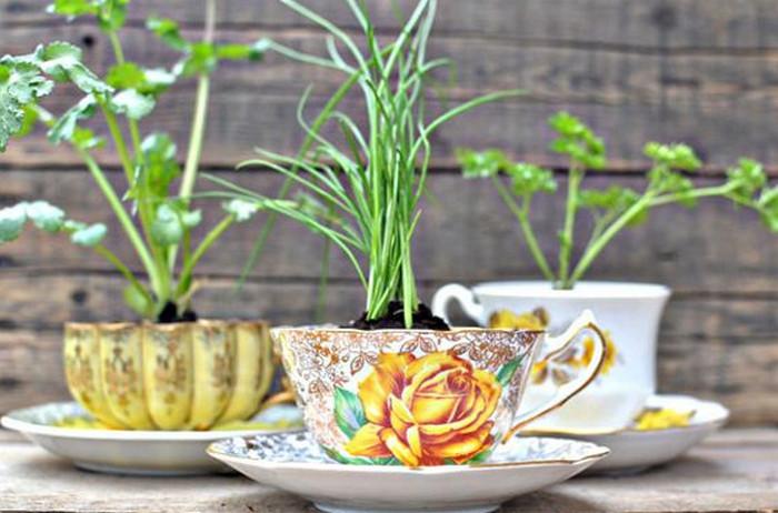 петрушка и лук в чашках
