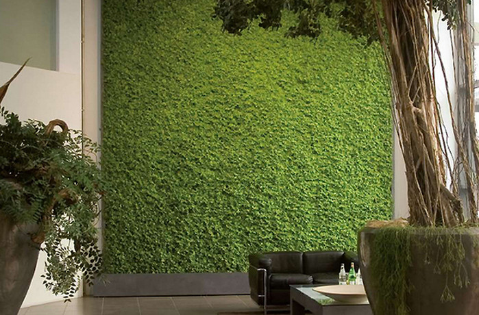 покрытие газон на стене