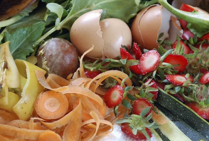 пищевые органические отходы