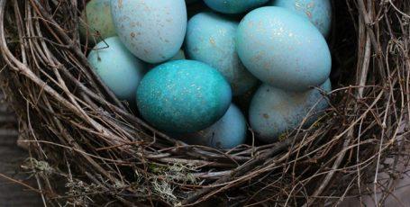 ТОП 10 пасхальных лайфхаков: красим яйца