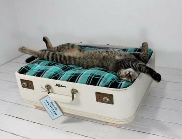 лежак для кота из чемодана