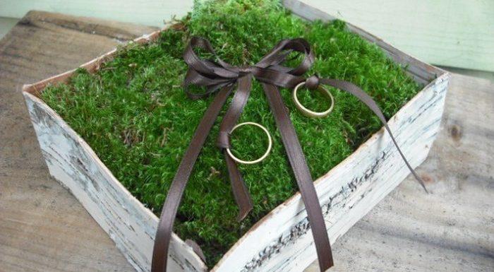 обручальные кольца на подушечке из мха