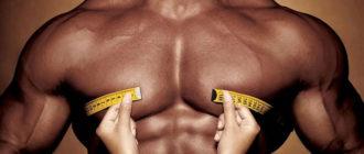 мускулистая мужская грудь