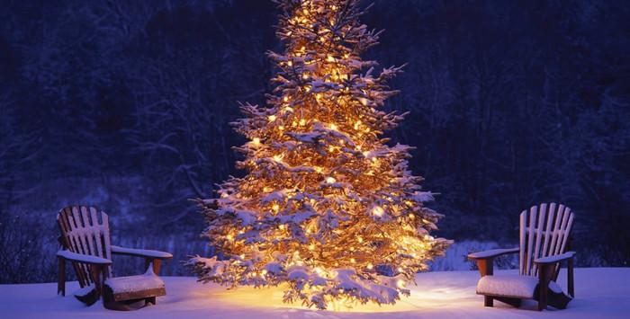 наряженная елка в лесу