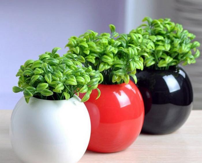 цветочные горшки с растениями