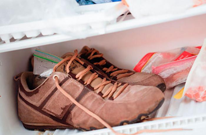 кроссовки в морозилке