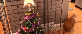 елка в клетке