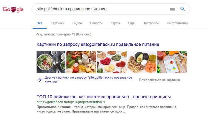поиск по сайту гугл