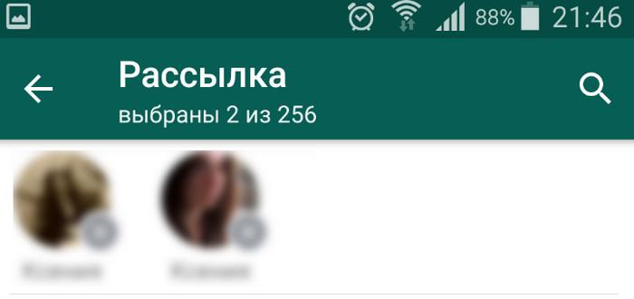 """опция """"рассылка"""" в whatsapp"""
