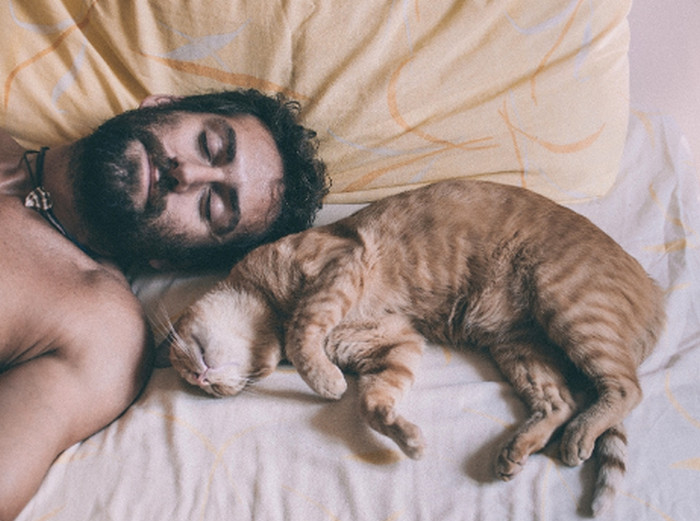 мужчина спит с котом