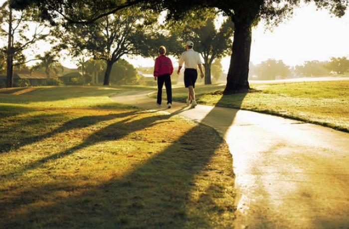 люди прогуливаются в парке