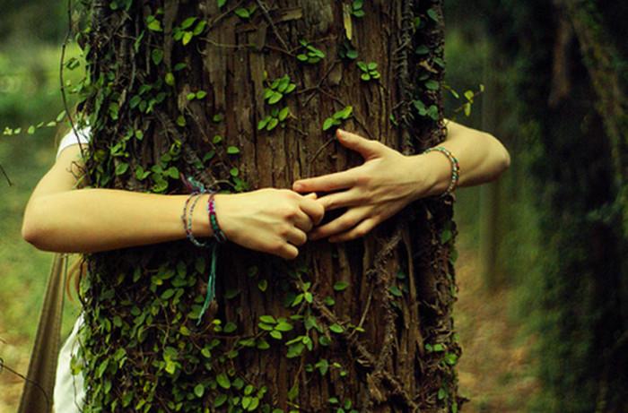 девушка обнимает дерево