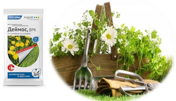 Топ 5 гербицидов от сорняков: обладают 100% эффективностью против любой сорной растительности!