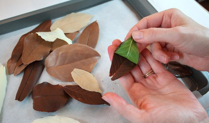шоколадные листочки